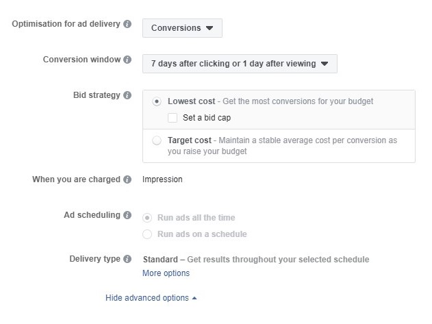 Facebook's bidding options