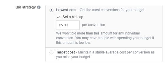 Lowest cost with a bid cap